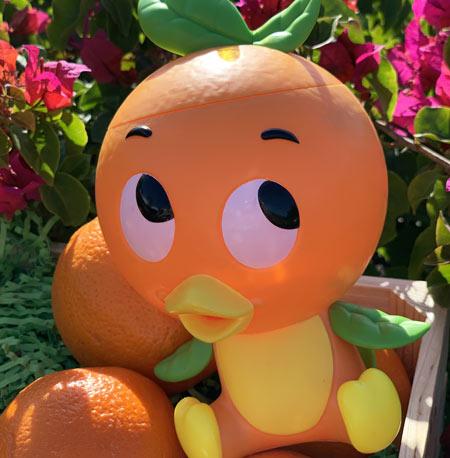 Free Orange Bird Giveaway | Mouse Memos Disney Blog