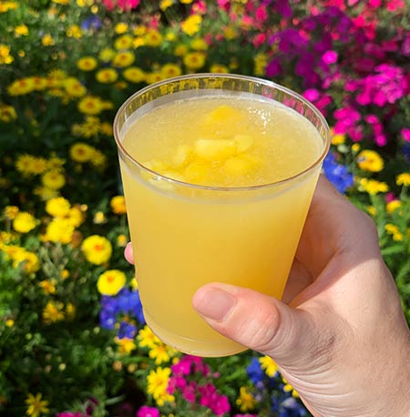 Tropical Freeze La Isla Fresca: Drinking Around the World Flower & Garden Festival Edition | Mouse Memos Disney Blog