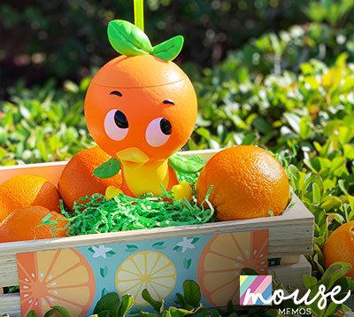 Happening Now: Mouse Memos Orange Bird Giveaway | Mouse Memos Disney Blog
