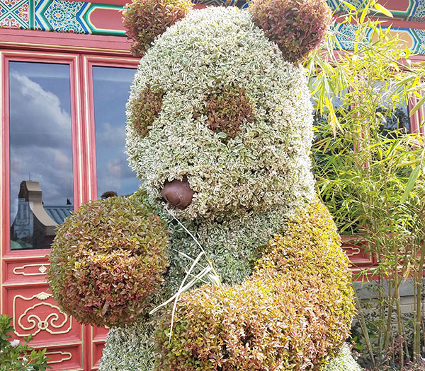 Panda Topiary 2019 Epcot Flower and Garden Festival Topiaries | Mouse Memos Disney Blog