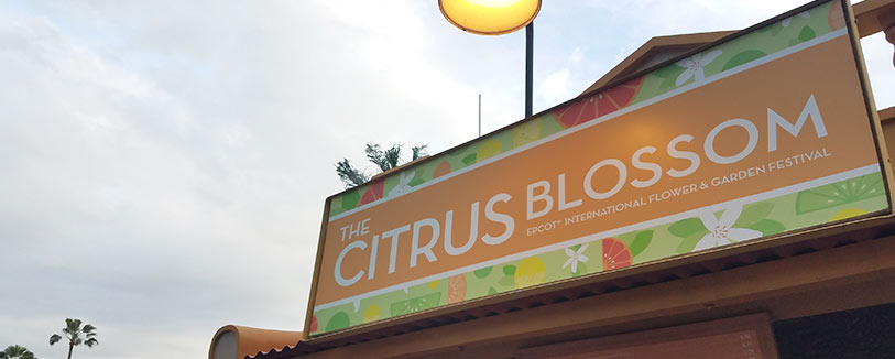 The Citrus Bloom Menu 2019 Epcot International Flower and Garden Festival | Mouse Memos Disney Blog