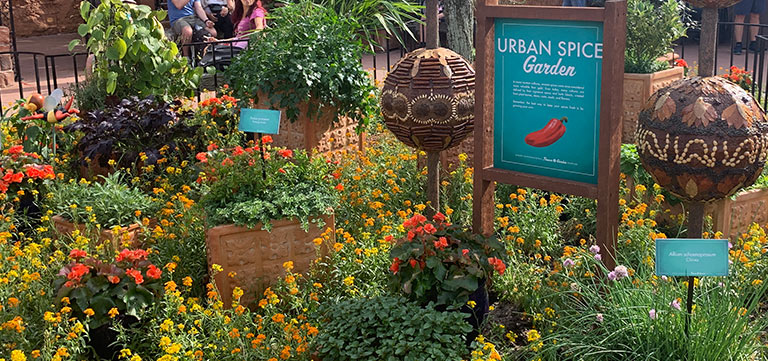 Urban Spice Garden at Epcot Flower & Garden Festival   Mouse Memos Disney Blog
