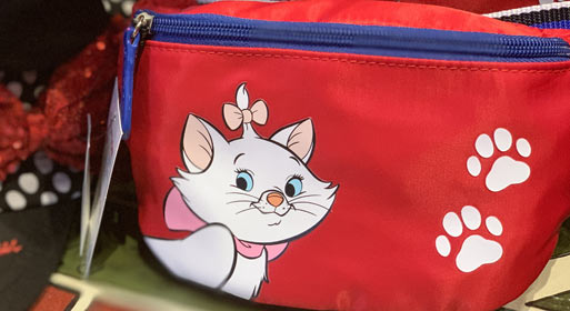 Disney Parks Essentials: What to pack for your Disney Trip When you bring a Hip Pack | Mouse Memos Disney Blog